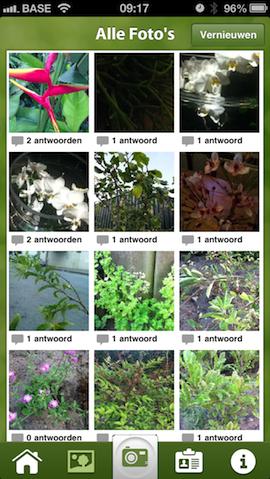 Plantifier planten